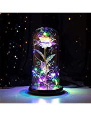 Rose Flower in Glass Dome with LED String Lights Unique Gifts Rose Lamp Romantic Night Light for Anniversary and Birthday Wedding, Valentine's Day, Christmas, Mother's Day, Girls