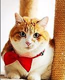yagopet 20pcs Pet Dog Bow tie Dog Bowtie Collar Mix