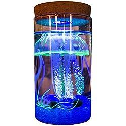 OMEM Seaweed Balls LED Jellyfish Bottles, Algae Moss Balls Seed Glass Jar Aquarium Terrarium Kit, Best Birthday Present (Have Remote Control, Blue)