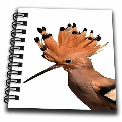 3dローズTaiche–ベクトル–Hoopoe鳥–美しいオレンジHoopoe Bird with Crownの羽–Drawing Book 4x4 notepad db_264486_3
