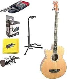 schmidt acoustic bass guitars