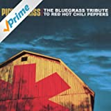 The Bluegrass Tribute To The Red Hot Chili Peppers: Pick My Kiss