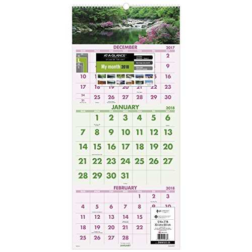 "AT-A-GLANCE Wall Calendar, 2018, December 2017 - January 2019, 3-Month Display, 12"" x 27"", Wirebound, Scenic (DMW50328)"