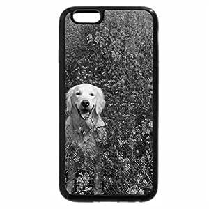 iPhone 6S Plus Case, iPhone 6 Plus Case (Black & White) - Spring dog