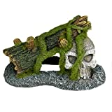 Blue Ribbon PET PRODUCTS EE-1128 Exotic Environments Skull with Moss