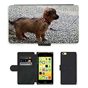 Hot Style Cell Phone Card Slot PU Leather Wallet Case // M00113472 Dog Doggie Puppy Leash Walk // Apple iPhone 5C
