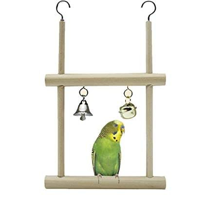 Amazon com : Bonaweite Wooden Bird Stand, Parrot Toys for