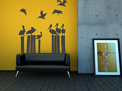 Amazon.com: Pelican Wall Decal, Beach Wall Decor, Bird Wall Decal ...