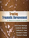 img - for Treating Traumatic Bereavement: A Practitioner's Guide by Laurie Anne Pearlman PhD (2014-01-13) book / textbook / text book