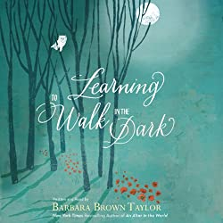 Learning to Walk in the Dark