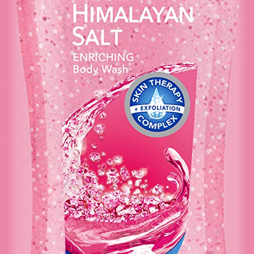 Dial Body Wash, Himalayan Salt, 21 Ounce Pack of 4