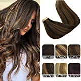 Labhair Tape in Hair Extensions Ombre Dark Brown Highlighted Light Brown Hair Extensions 100% Real Remy Human Hair Extensions Tape in 50g 20pcs 14inch