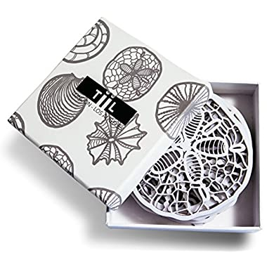 Drink Coasters By TiiL. Seashell-Inspired Designer Coaster Set of 6 Plus Gift Box, White