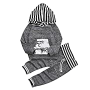 Toddler Infant Baby Boys Dinosaur Long Sleeve Hoodie Tops Sweatsuit Pants Outfit Set (0-6 Months)