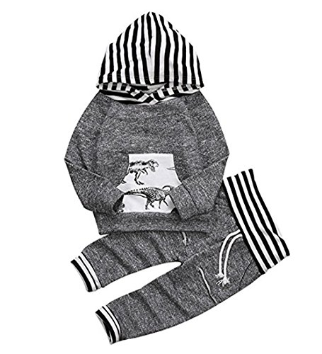 Toddler Infant Baby Boys Dinosaur Long Sleeve Hoodie Tops Sweatsuit Pants Outfit Set (6-12 Months)