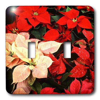 Double Poinsettia - 3dRose LLC lsp_3310_2 Poinsettia Double Toggle Switch