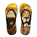 Vcddjns4 Lions Africa Flip Flops Unisex Design Beach Flip Flop Sandals For Men And Women