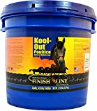Product review for Finish Line Horse Products Kool Out