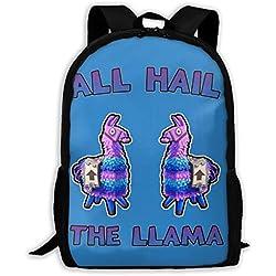 Lightweight All Hail The Llama Fortnite Printed School Backpack Water Resistant Travel Rucksack Bag Laptop Backpack Daypack,17 Inch