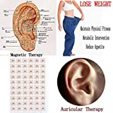 Botrong 300pcs Magnetic Therapy Ear Patch Auricular Auriculotherapy Acupuncture Seed (Gold)
