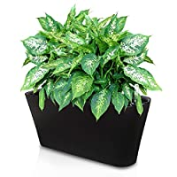 Ergo Self Watering Planter Pot - Indoors, Outdoors Planters Box,
