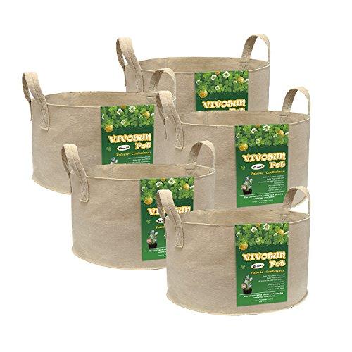 Grow Bag Tomatoes - 6