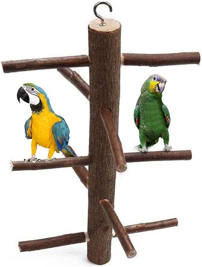 Nishci Juguete de Loros Colgantes - Pájaros Perchas Jaula Stand Juguetes Naturales Escalera de Madera Juguete de pájaros Loro Escaleras de Escalada para periquitos Canarios Cockatiels Cockatoo Perico: Amazon.es: Productos para mascotas