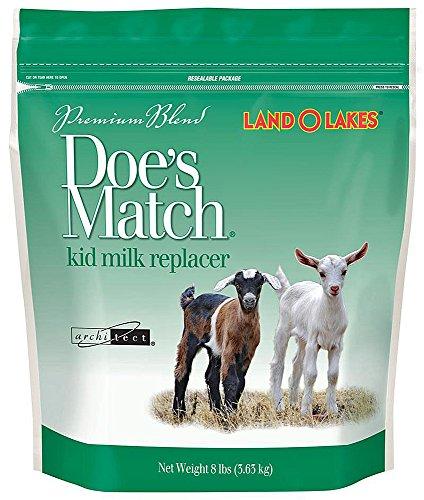 Does Match Premium Kid Milk Replacer - Kid Milk Replacer