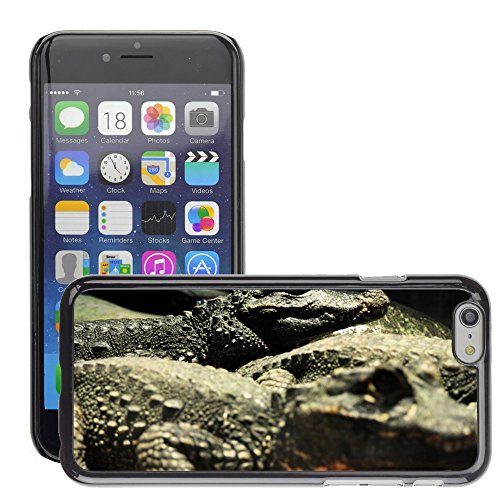 "Bild Hart Handy Schwarz Schutz Case Cover Schale Etui // M00134702 Krokodil Lizard Reptile Dangerous // Apple iPhone 6 PLUS 5.5"""