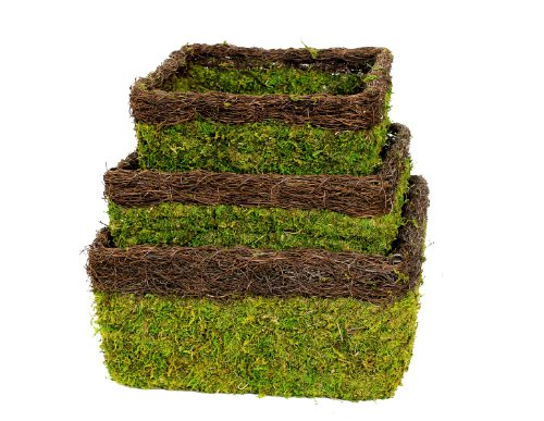 Spanish Hanging Basket - Super Moss (29327) MossWeave Hanging Basket - Square, Fresh Green with Wicker Rim, Set of 3 (S/M/L)