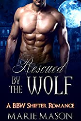 Rescued by the Wolf (A BBW Adventure Shifter Romance) (The McCall Brothers' Trilogy Book 2)