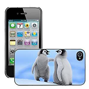 Hot Style Cell Phone PC Hard Case Cover // M00047013 animals sea baby penguins // Apple iPhone 4 4S