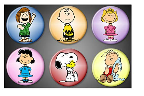 Peanuts character magnets Charlie Brown Snoopy and woodstock Linus Sally Lucy Peppermint Patty Fridge magnets locker whiteboard]()
