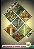 Najaf Heritage at Risk, Ieef Heritage Group, IEEF, 1490932658