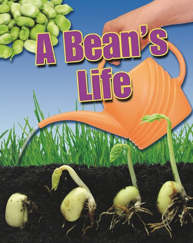 A Bean's Life (Crabtree Connections)