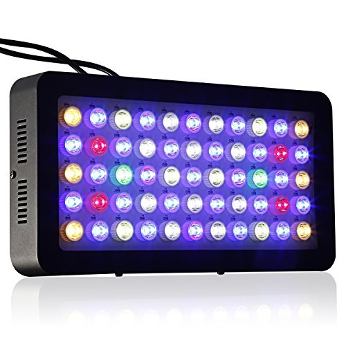 Aquarium LED Light ICOCO 55x3W 165W LED Dimmable Full Spectrum Aquariam Light for Coral Reef LPS/SPS Growth Fish Tank Lighting Blue and White Light  sc 1 st  Amazon.com & LED Lights SPS Coral: Amazon.com azcodes.com