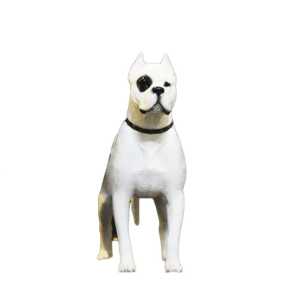"""PET SHOW Action Figure Accessories 1:6 Dogo Argentino Model for Home Car Dashboard Office Cars Vehicle Decorations Resin Cute Pet Doll 8.66"""" Pack of 1(Pirate)"""