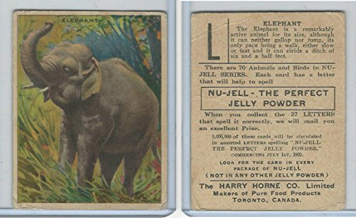 FC1, Harry Horne Co, Nu-Jell, Animals And Birds, 1925, Elephant