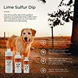 Lime Sulfur Dip for Dogs, Cats & Horses