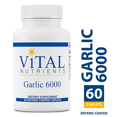 Vital Nutrients – Garlic 6000 – Cardiovascular, Immune, and Cholesterol Level Support – 60 Enteric Coated Capsules For Sale