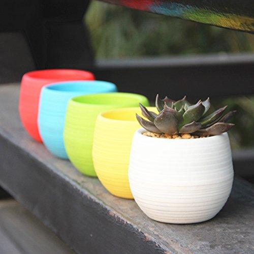 Mkono Colorful Succulent Planter Plastic product image