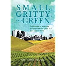 Small, Gritty, and Green: The Promise of America's Smaller Industrial Cities in a Low-Carbon World (Urban and Industrial Environments) by Catherine Tumber (2013-09-13)
