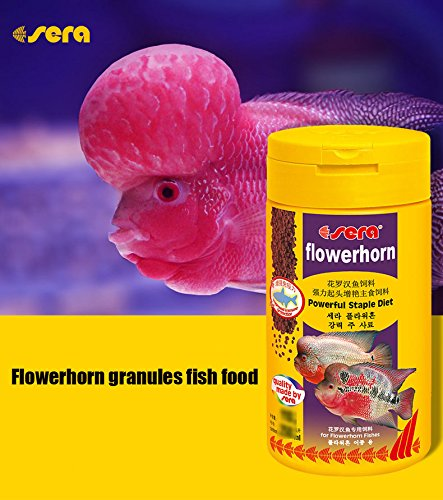 Sera fish food aquarium flowerhorn granules powerful for Purina tropical fish food