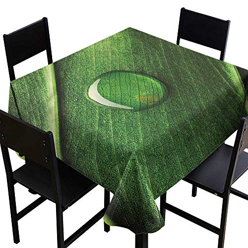 Green Pool Tablecloth Drops (Green Square Tablecloth Gardening Theme Water Drop Resistant/Spill-Proof/Waterproof Table Cover 36 x 36 Inch)