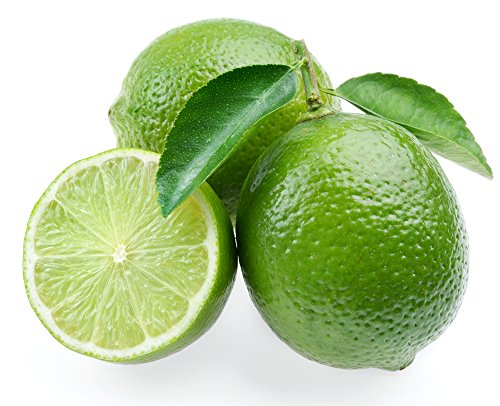 Persian Lime Tree - Fruit Bearing Size -8'' Pot-NO Ship to TX, FL, AZ, CA, LA, HI by Hirt's Gardens (Image #1)