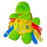 """BUCKLE TOY """"Bucky"""" Turtle - Toddler Early Learning Basic Life Skills Children's Plush Travel Activity"""