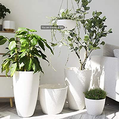 White Hanging Planter Basket - 8 Inch Indoor Outdoor Flower Pots, Plant Containers with Drainage Hole, Plant Pot for Hanging Plants, Pack 2: Garden & Outdoor