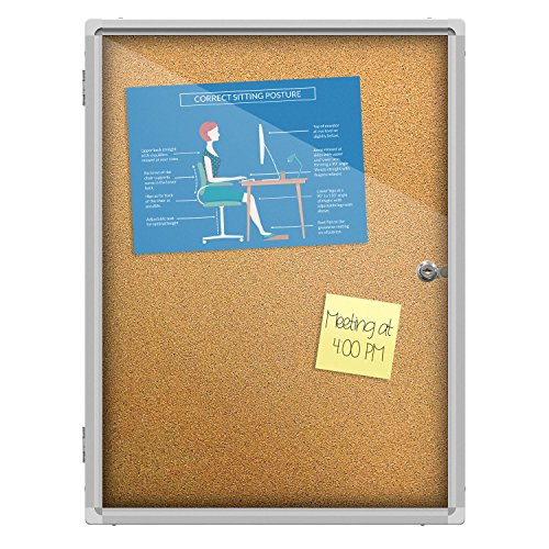 Thornton's Office Supplies Indoor Aluminum Frame Wall Mount Enclosed Cork Bulletin Board with Locking Door (24 x 18) (Enclosed Indoor Cork Message Board)
