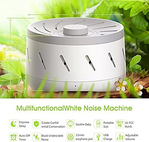 Adaptive Sound Technologies Lectrofan Machine with 10 Fan and 10 White Noise Sounds, Black, 1.26 Pound
