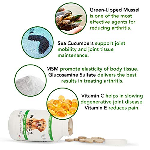 Joint Supplement for Dogs - Green Lipped Mussel, MSM + Glucosamine Formula - Helps to Restore Mobility, Relieve Arthritis & Hip Dysplasia Pain, and Reduce Inflammation, No Artificial Colors or Flavors